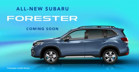 New 2019 forester