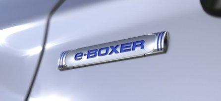 e-Boxer Hybrid 2019