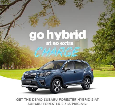 Forester Hybrid